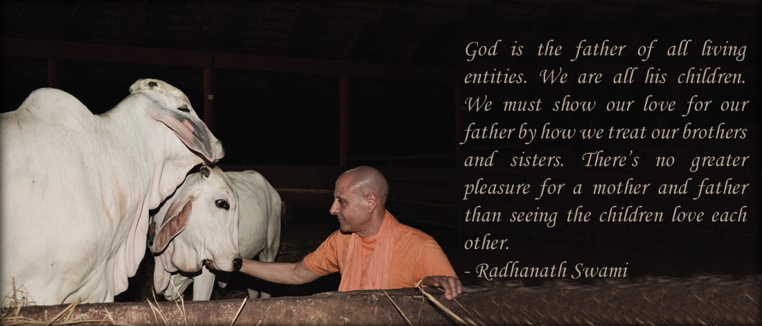 Radhanath Swami on Greater pleasure