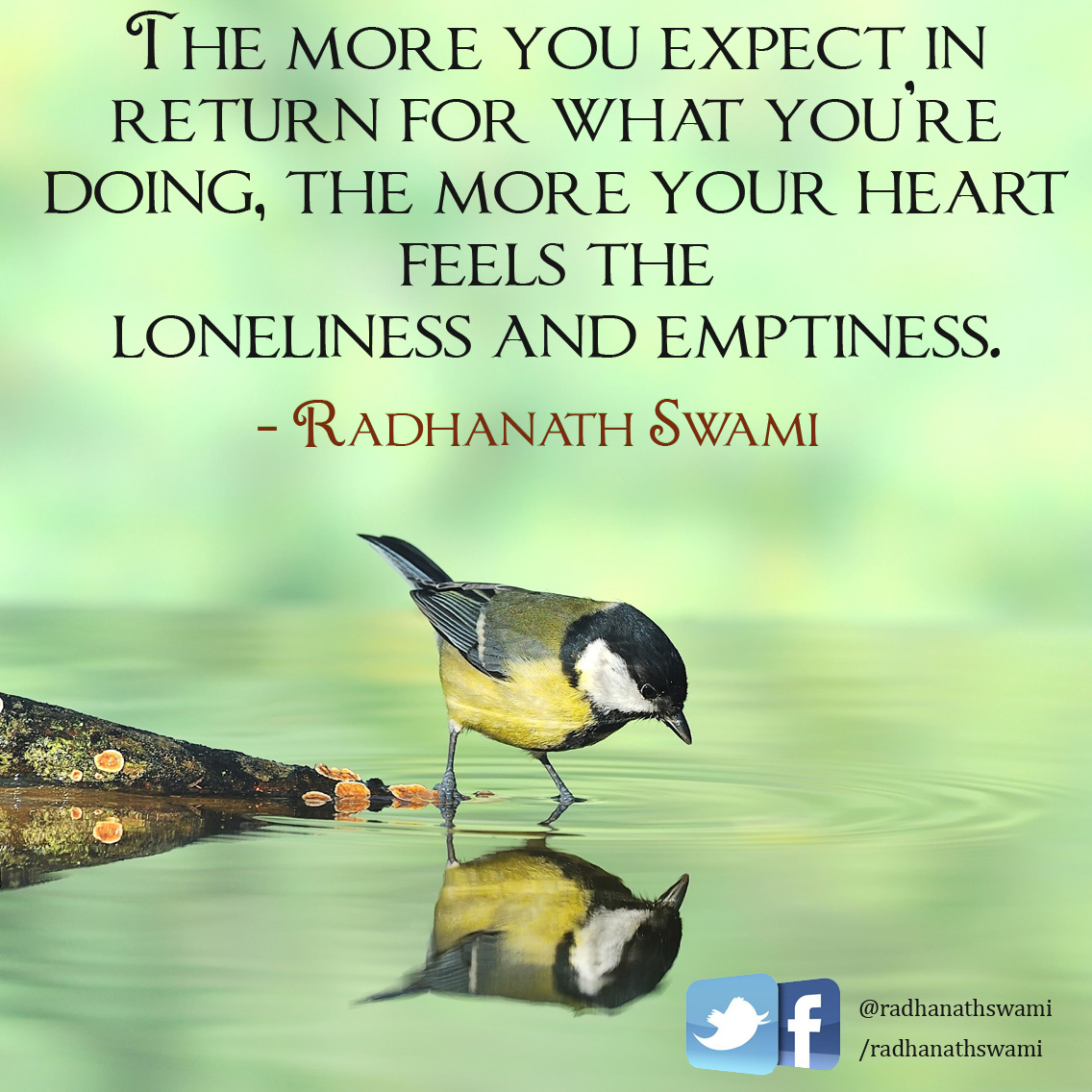 Expectation_quotes03