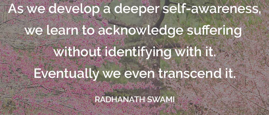 Spiritual Quotes On Love Amazing Radhanath Swami's Spiritual Quotes